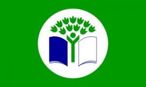 green-flag-300x180.jpg