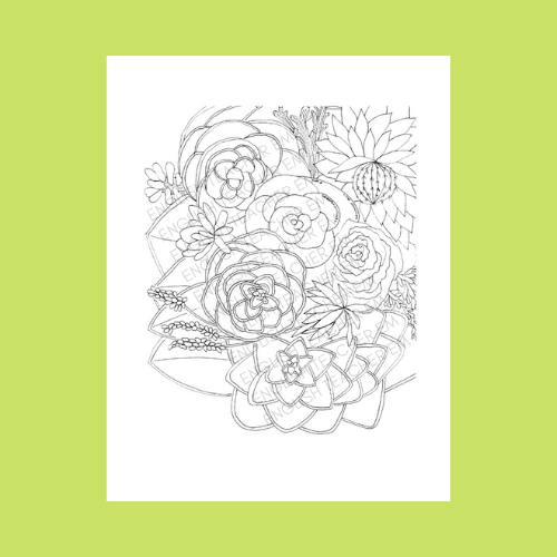 SUCCULENT GARDEN COLORING PAGE.png