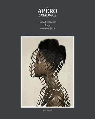 APERO_Catalogue_Shape_November2018