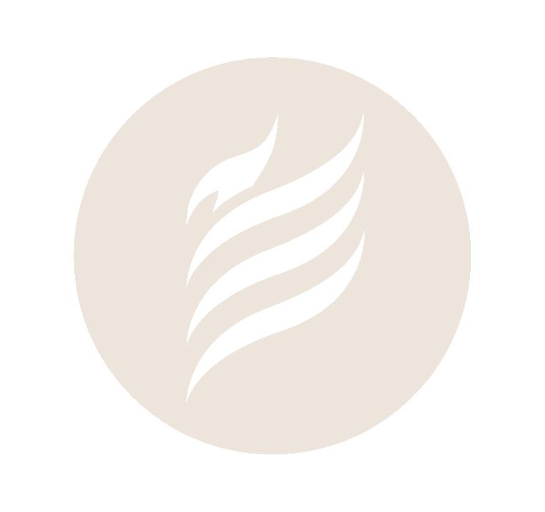 Phoenix Summit_Icon-12.png