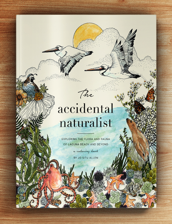 The-Accidental-Naturalist-Cover.jpg