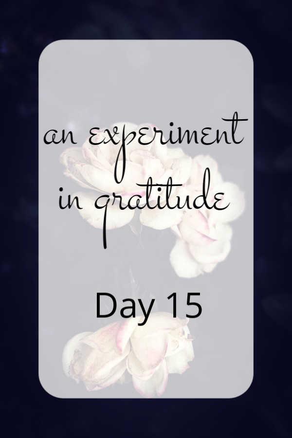 Day 15.jpg