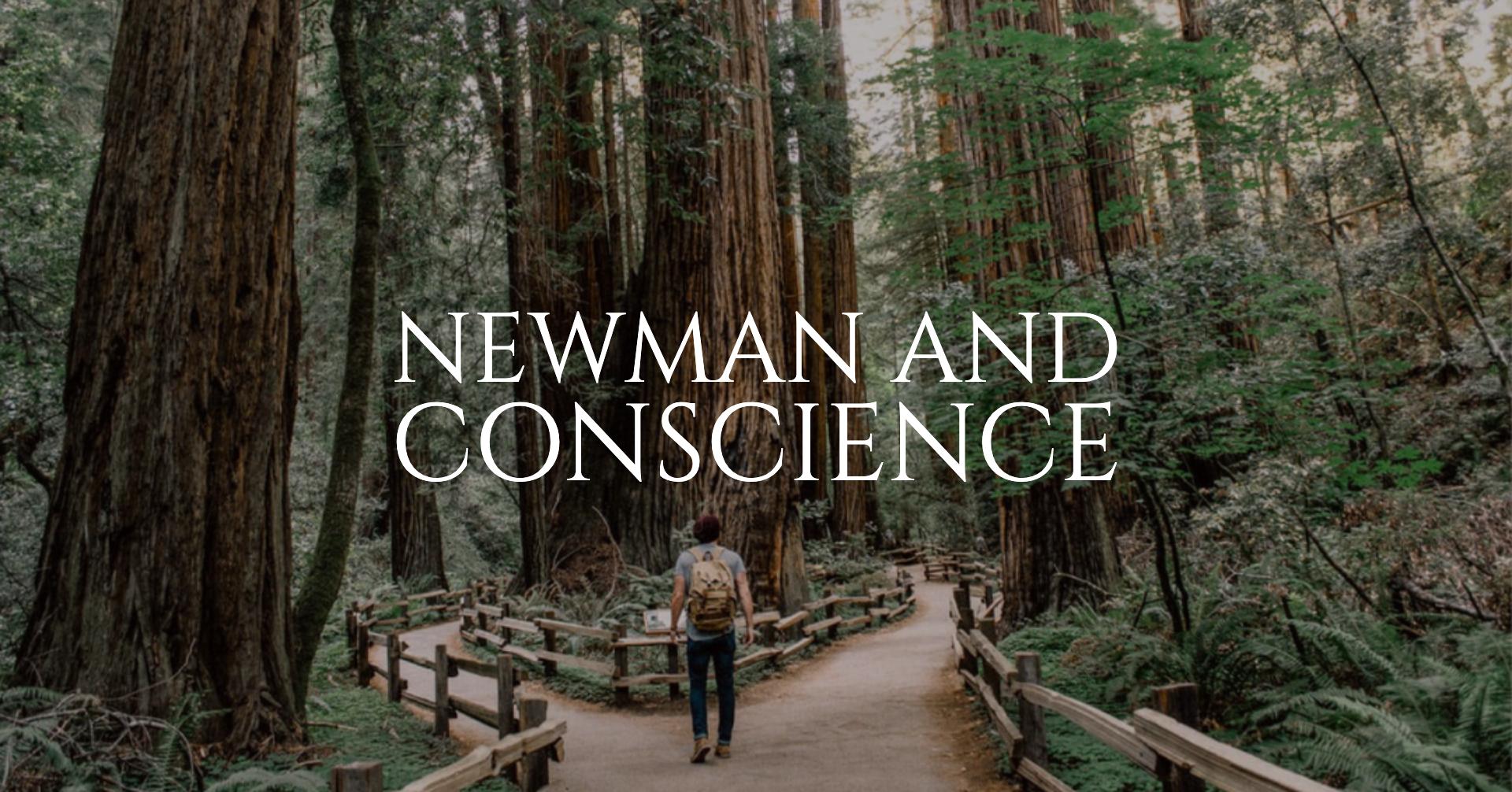 newman blog (1).png