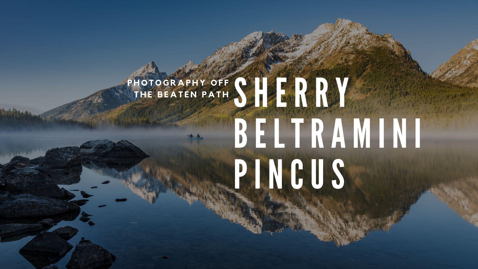 Sherry Beltramini Pincus.jpg
