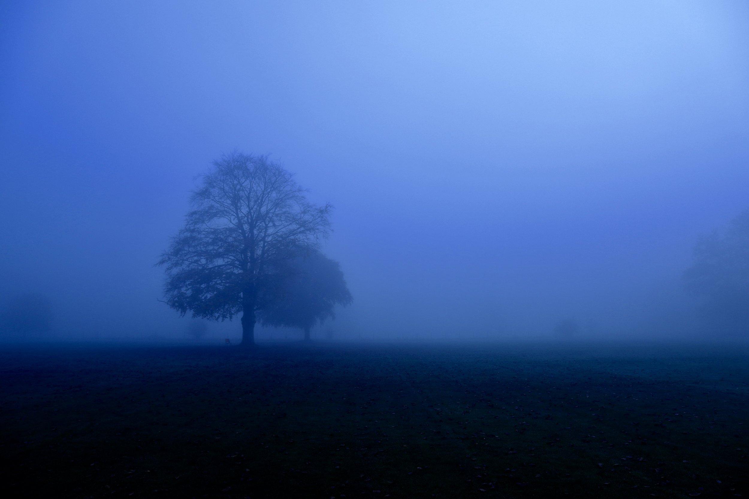 Buckinghamshire, UK.