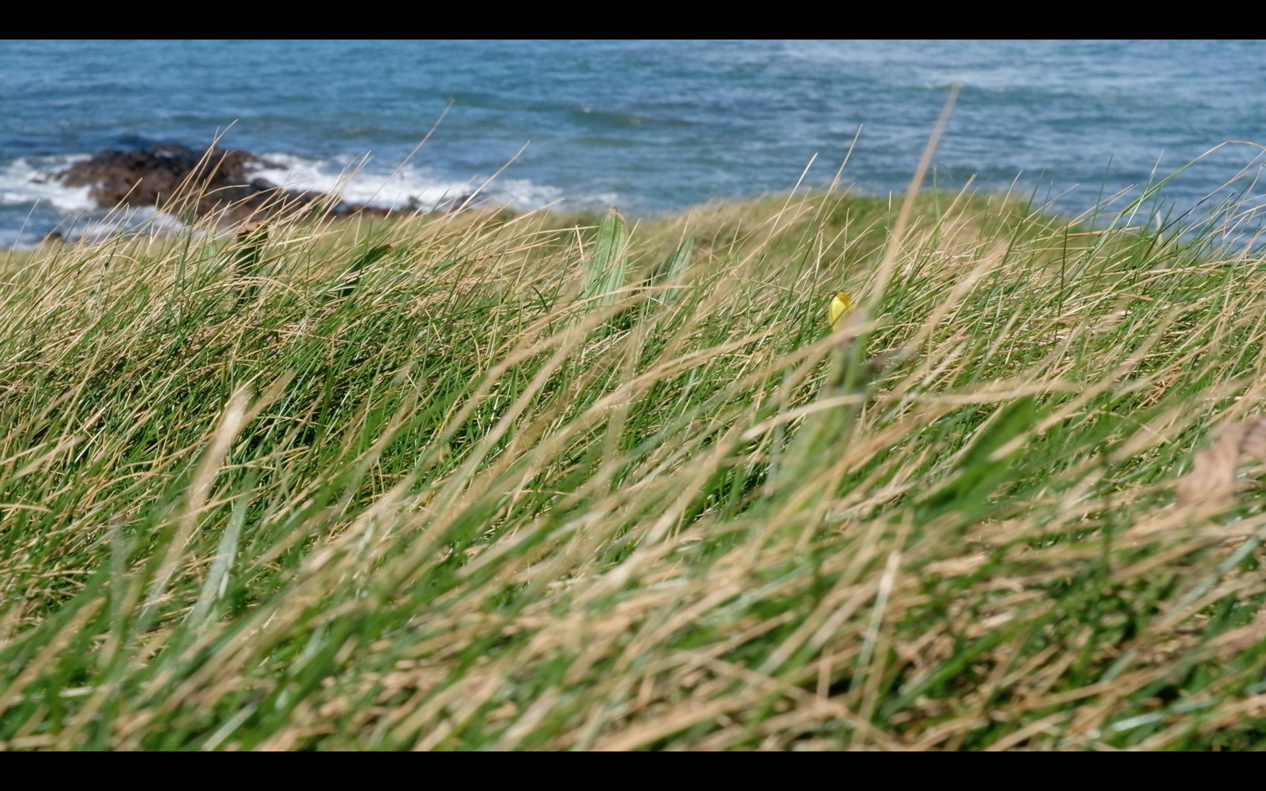 Screen Shot 2019-05-14 at 15.42.37.png