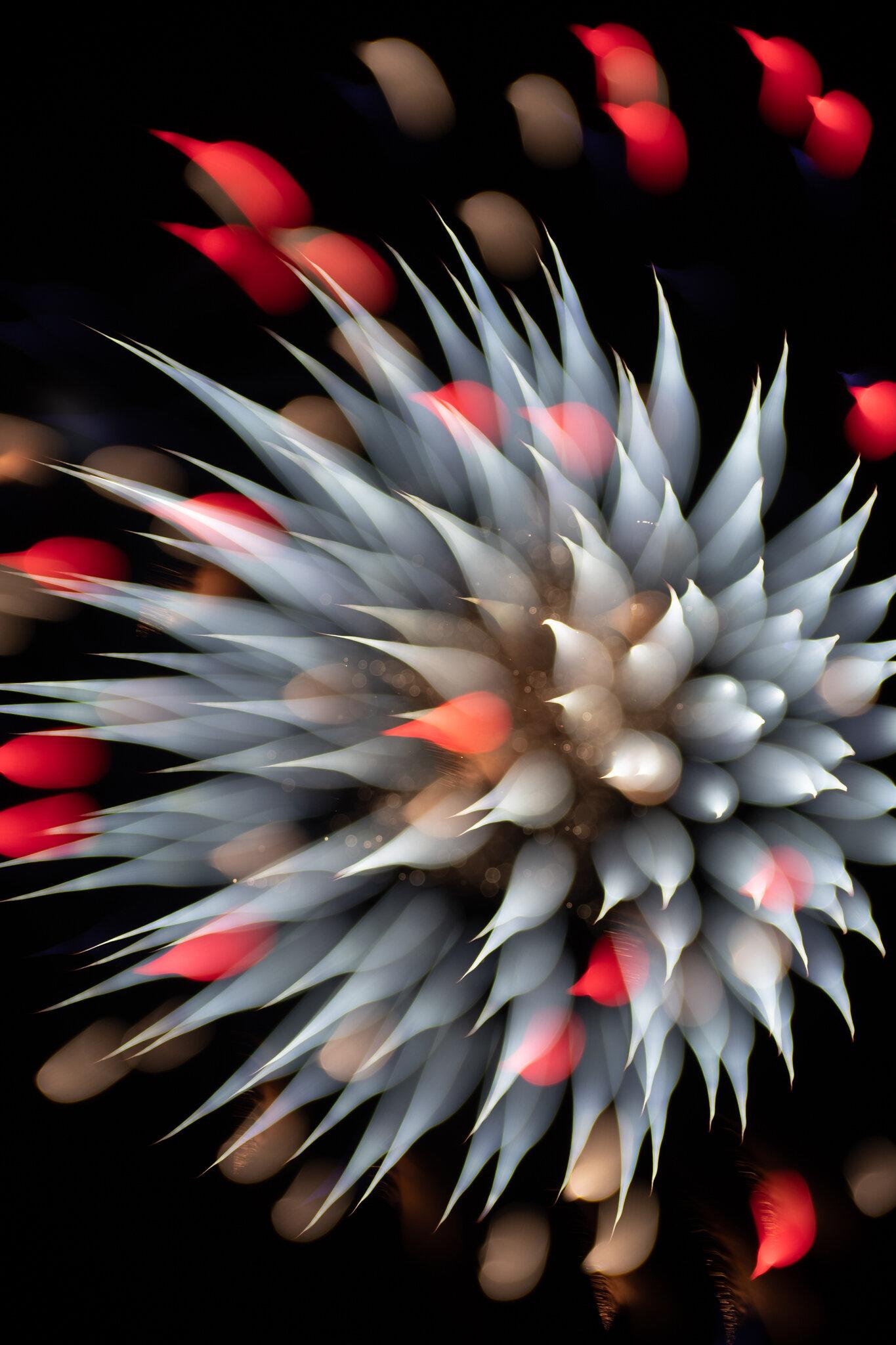 focuspulledfireworks-7.jpg