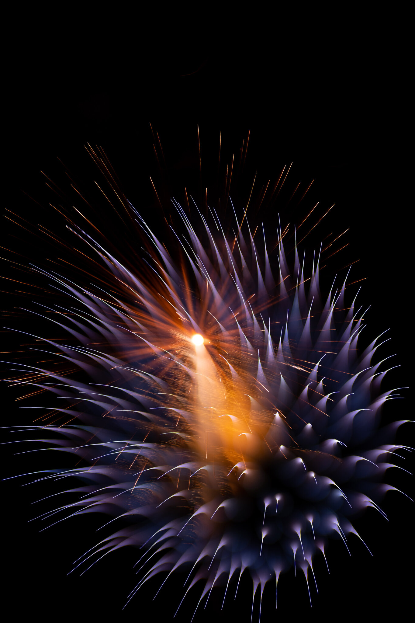 focuspulledfireworks-14.jpg