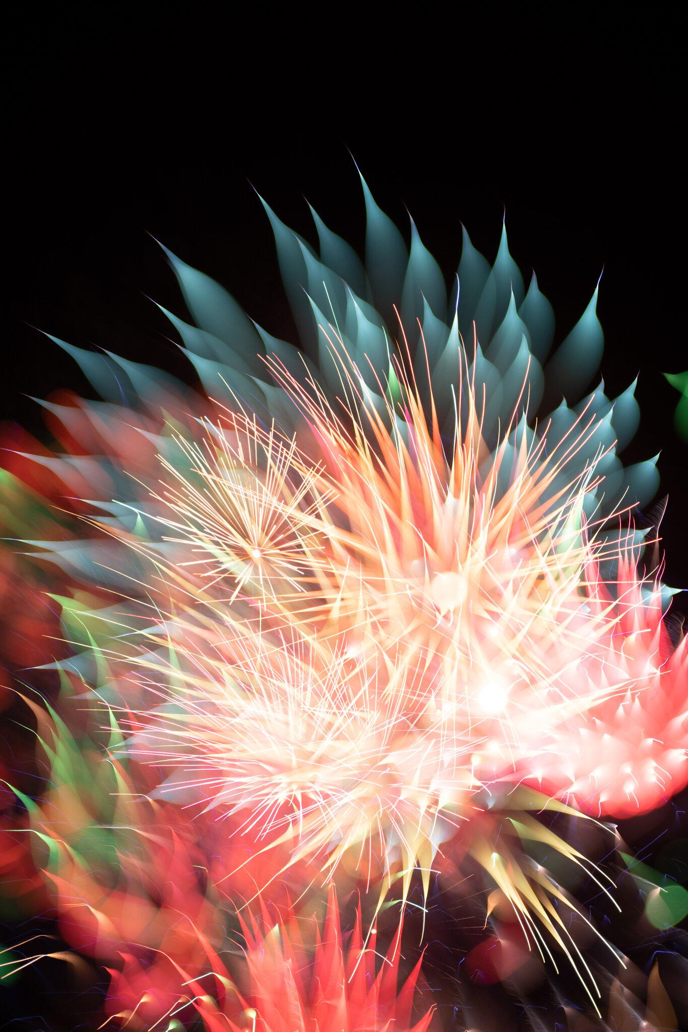 focuspulledfireworks-17.jpg