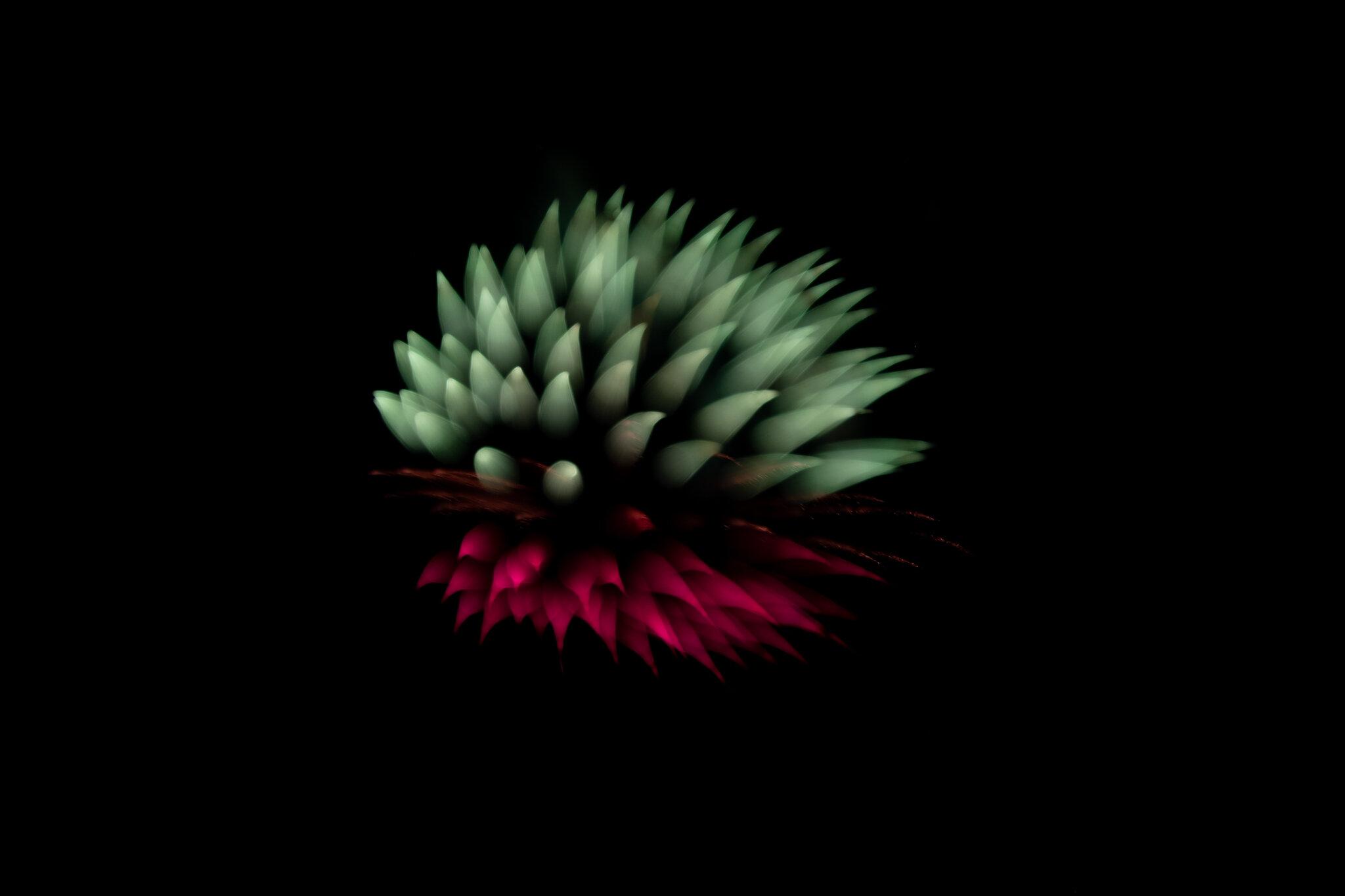 focuspulledfireworks-19.jpg