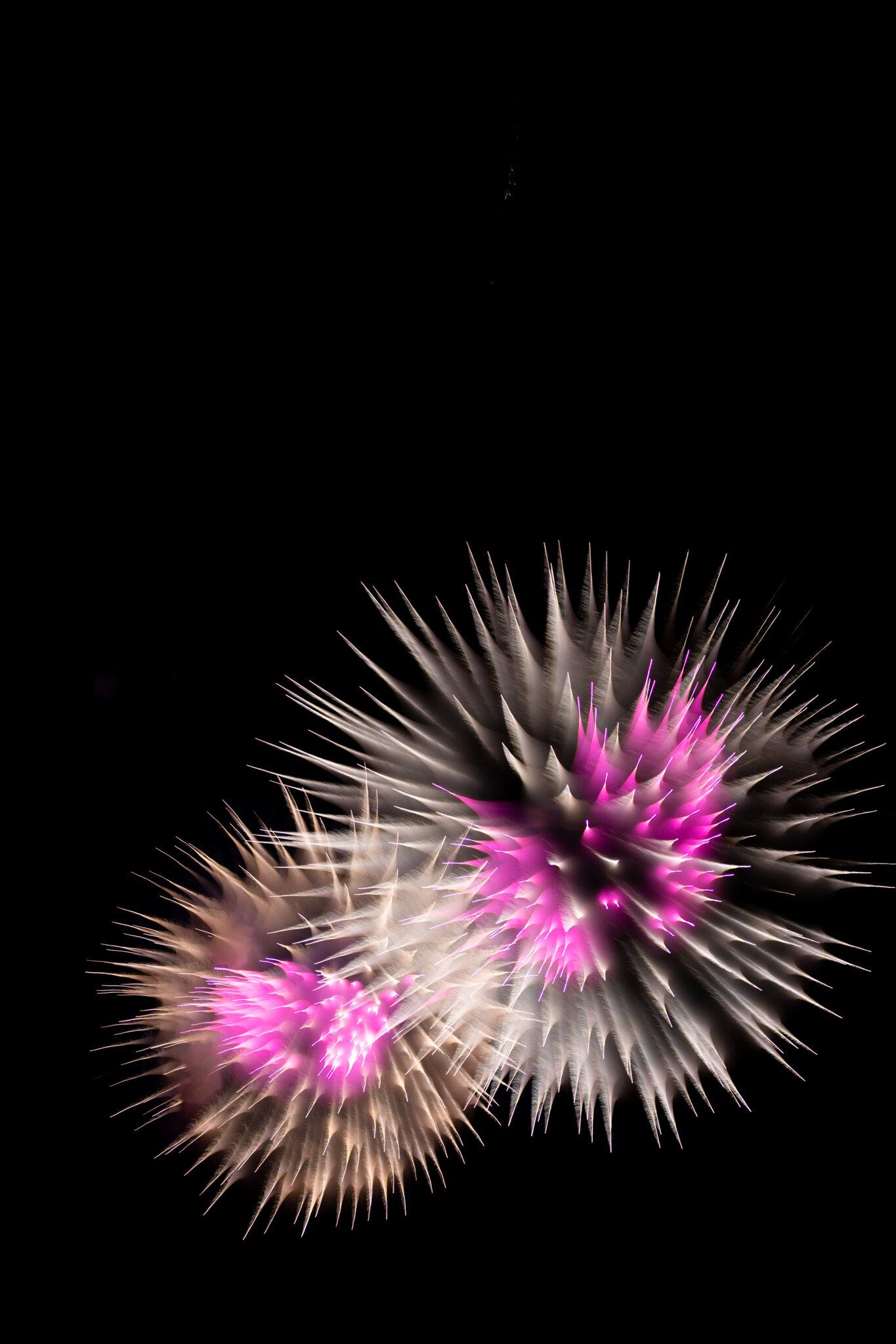 focuspulledfireworks-26.jpg