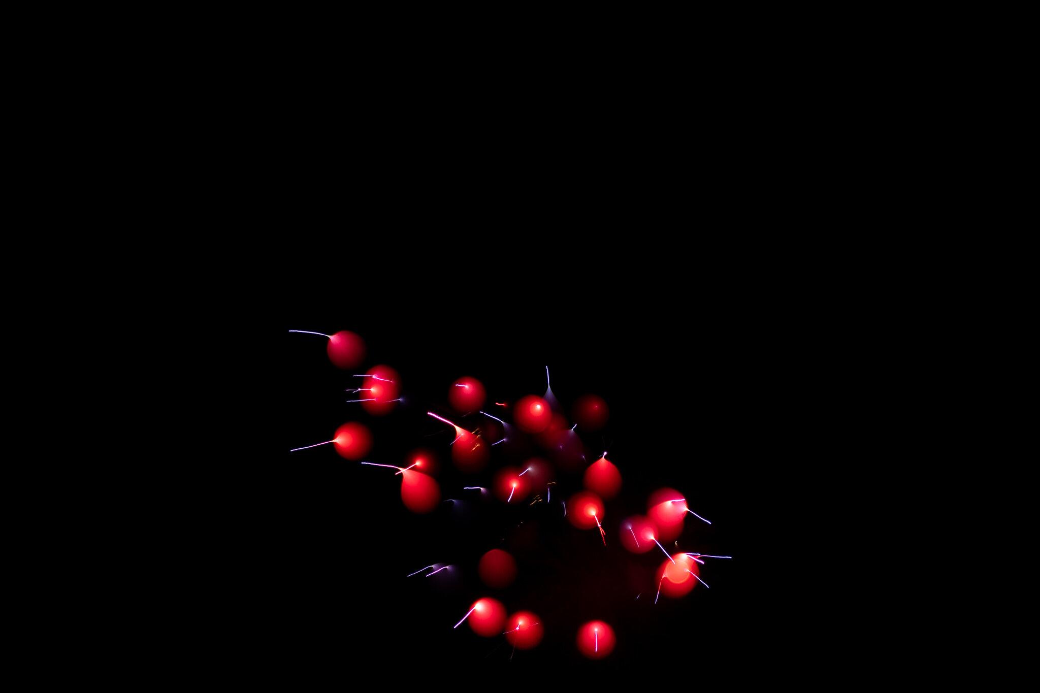 focuspulledfireworks-39.jpg