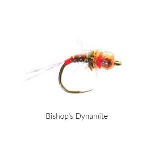 Blank 500 x 500 bishop's dynamite.jpg