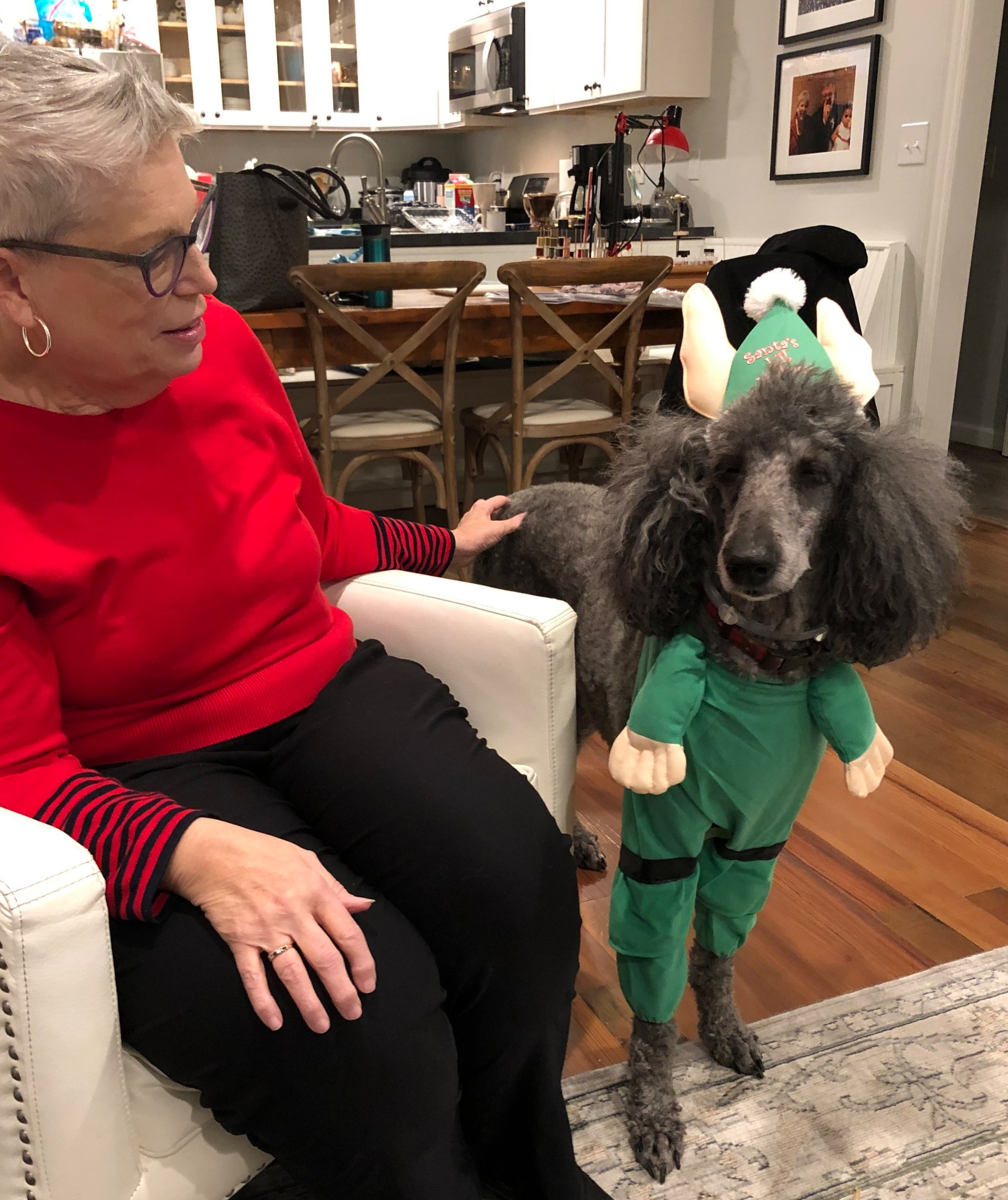People should never do this to a dog. (Confession: I bought the elf outfit)