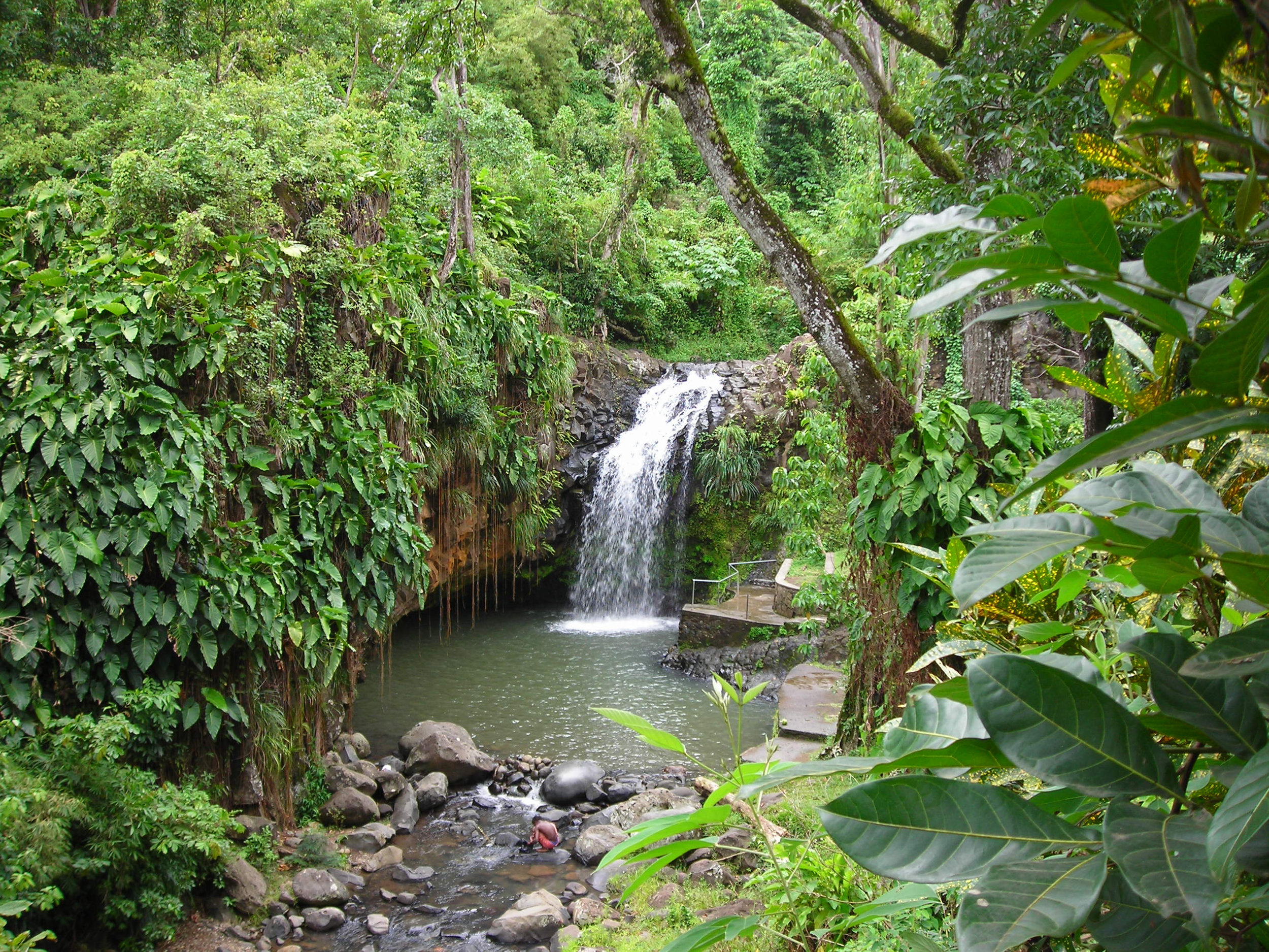 Canva - Grenada Waterfall.jpg
