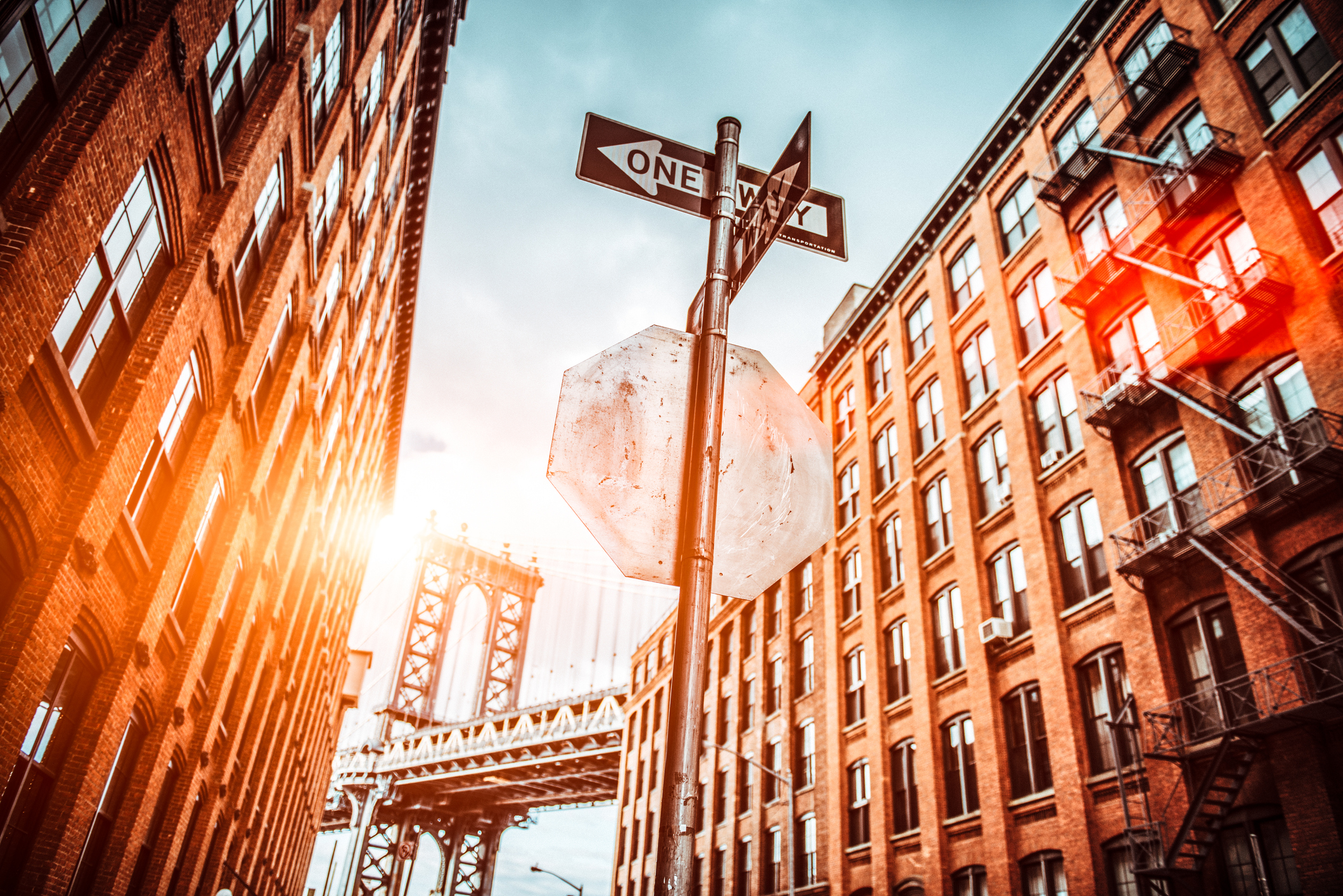 NEW YORK GUIDES -