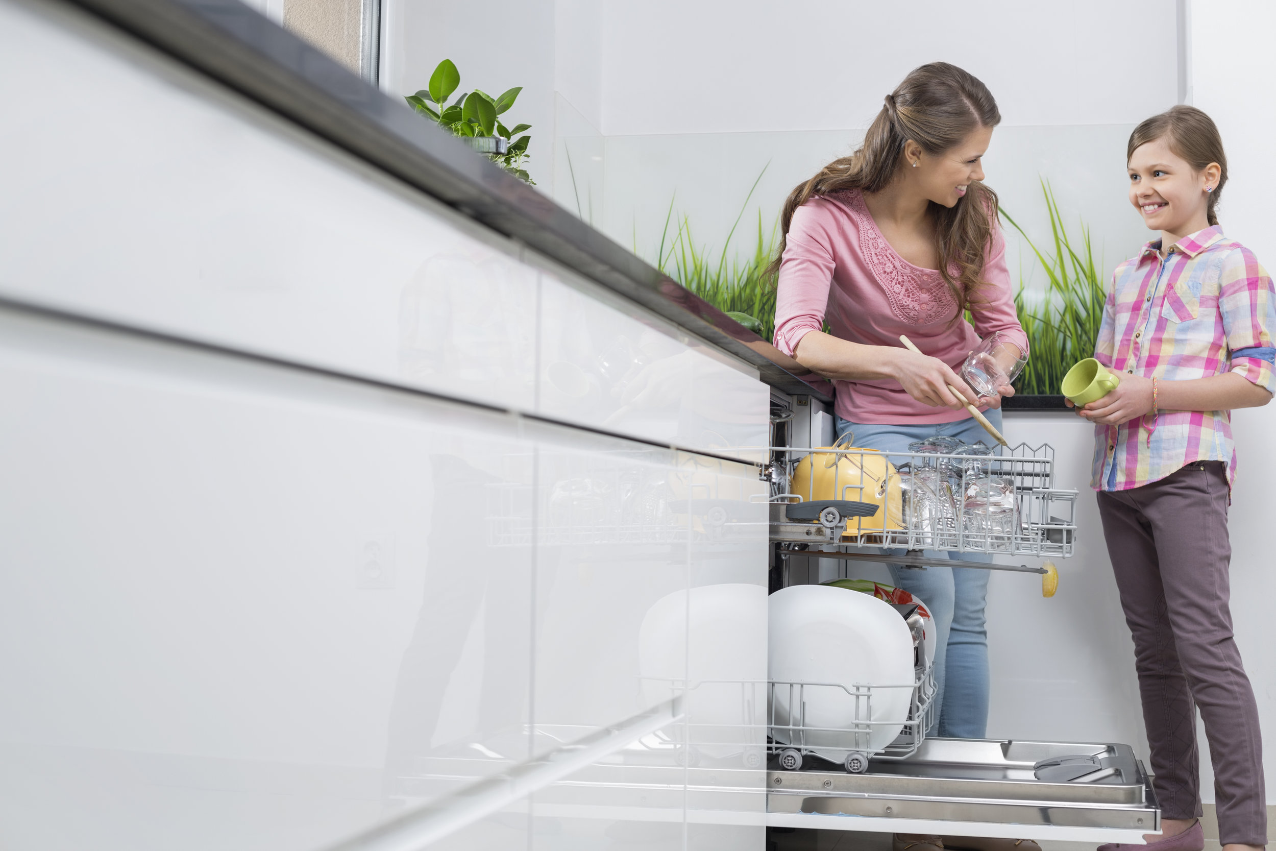 Clean dishes, Save money - You can cut down total cost by investing in an energy efficient dishwasher from over $20/month to $10/month, even with daily use.