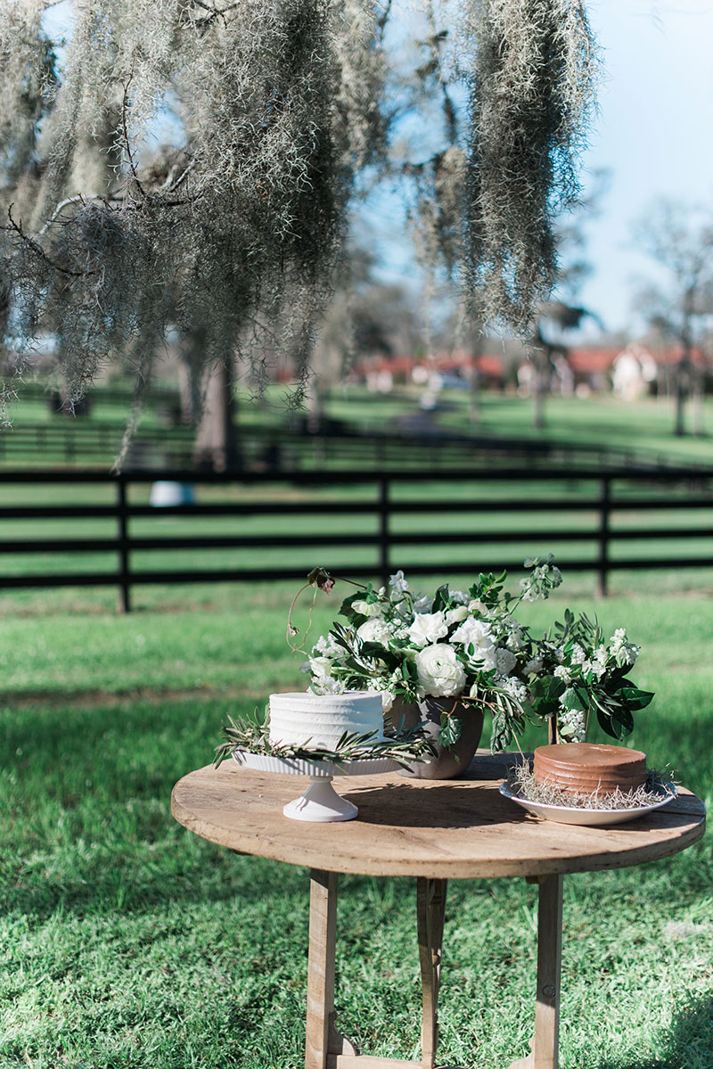 8-portrait-double-pair-1-lanson-b-jones-floral-and-events-houston-texas-wedding-florist-white-and-green-country-wedding.jpg