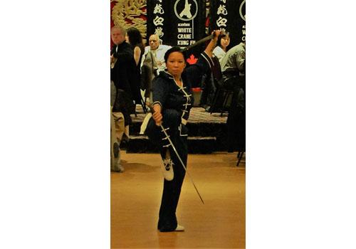 kung-fu-double-swords.JPG