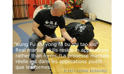 kung-fu-laval-applications-1.jpg