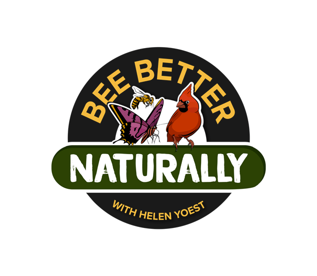 bee-better-logo.png