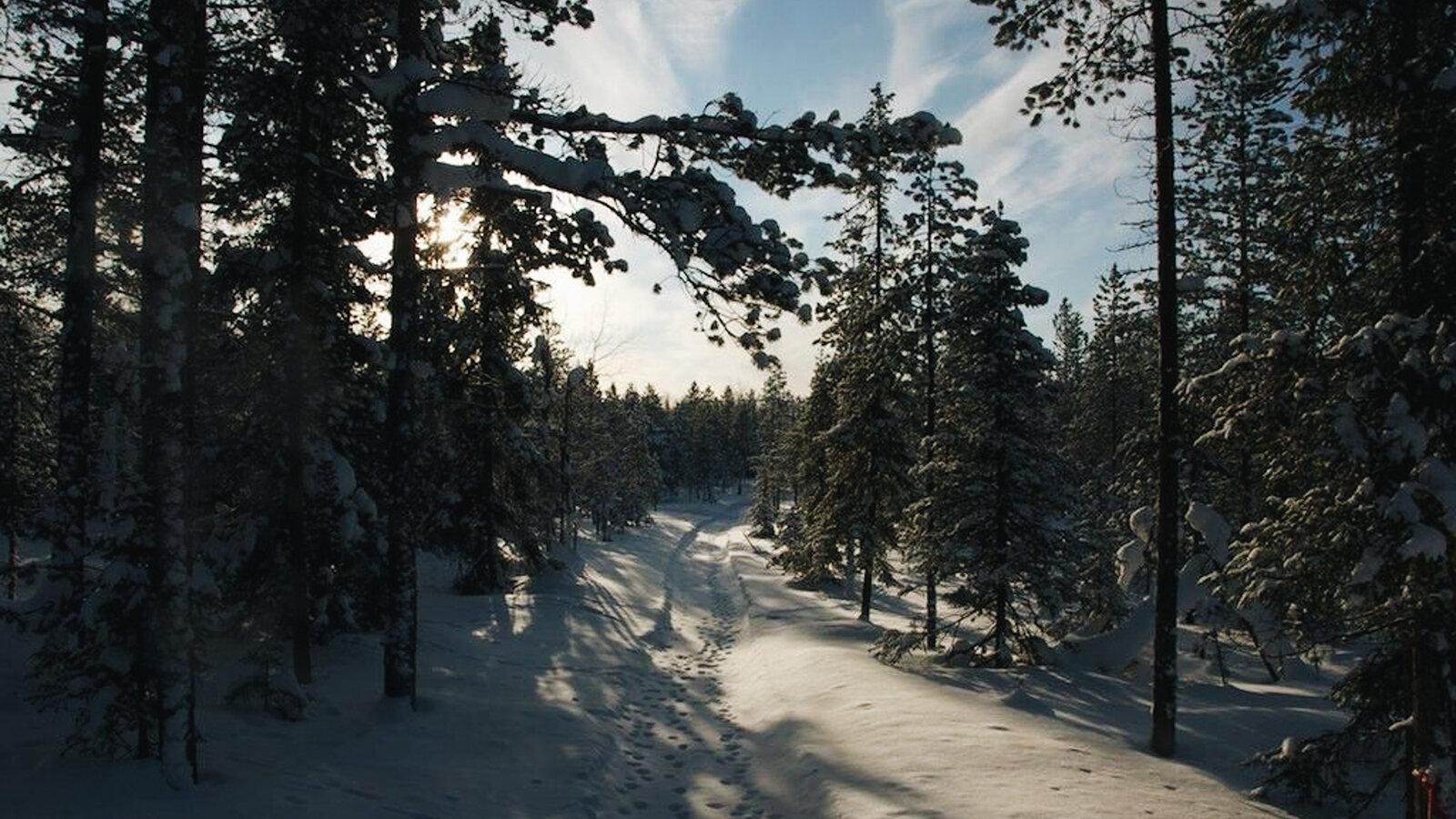 Lapland-45.jpg