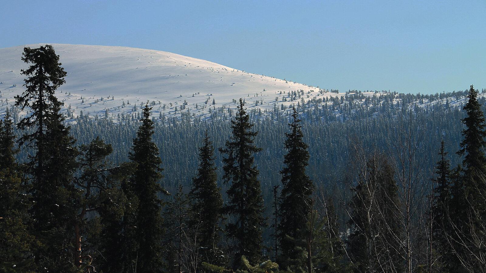 Lapland-53.jpg
