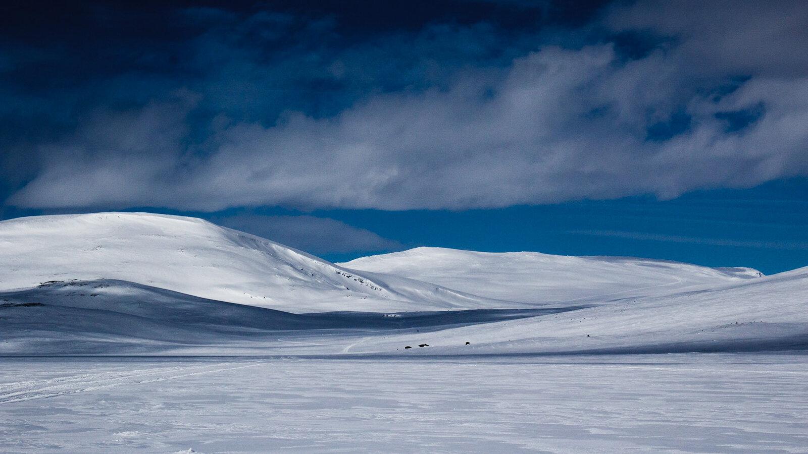 Lapland-28.jpg