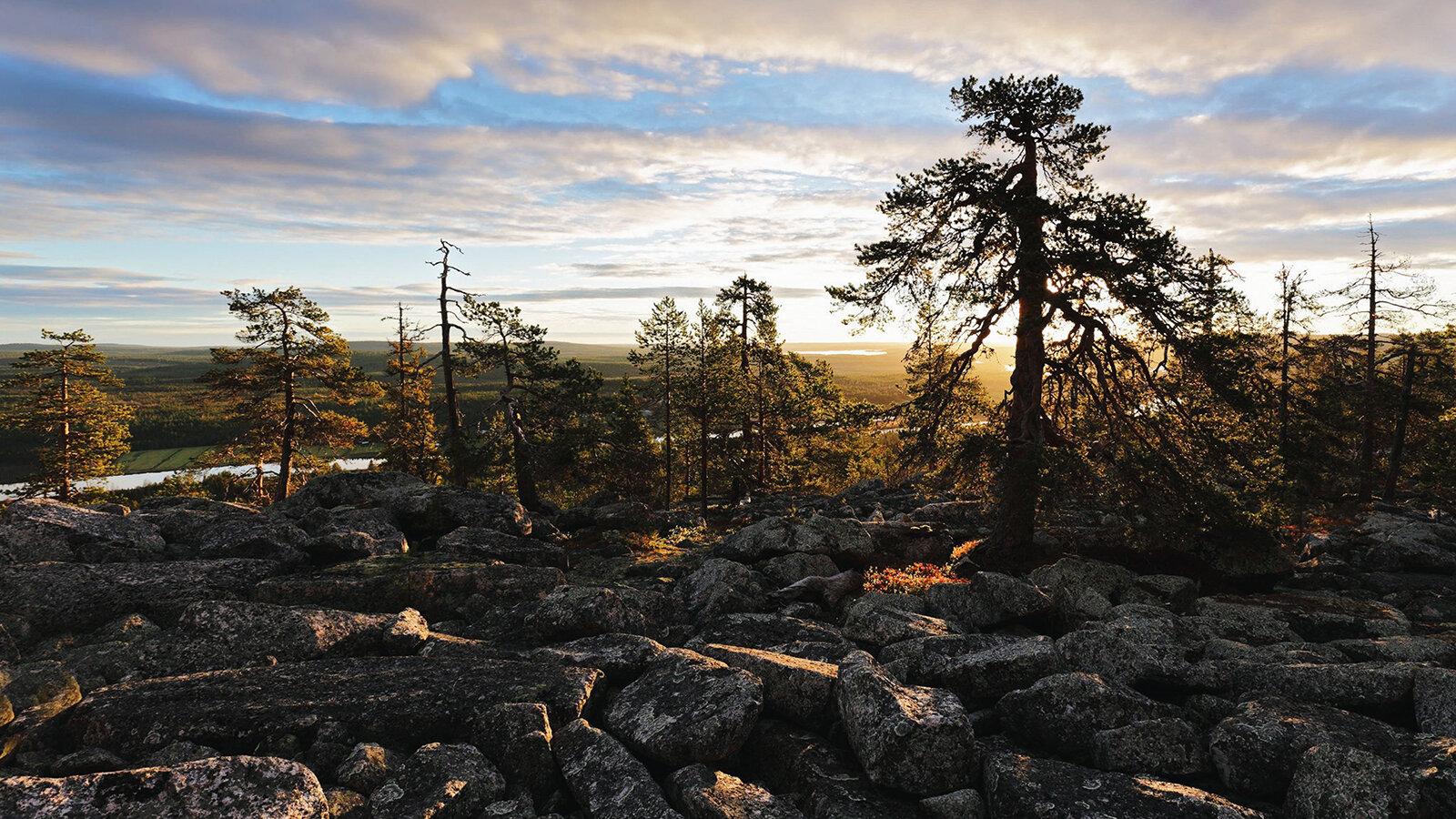 Lapland-41.jpg