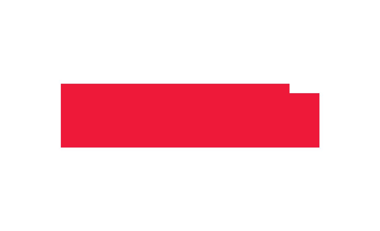 Patrocinadores-Rent-a-Pro_0002_Wilson.png../