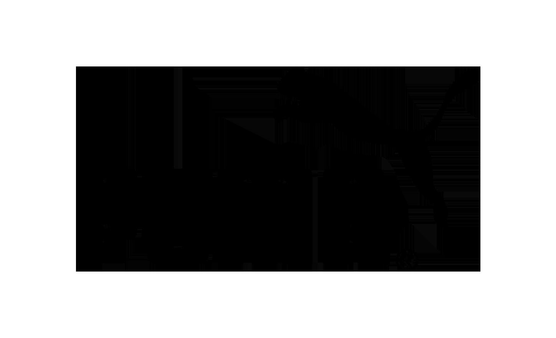 Patrocinadores-Rent-a-Pro_0001_puma-2-logo-png-transparent.png./