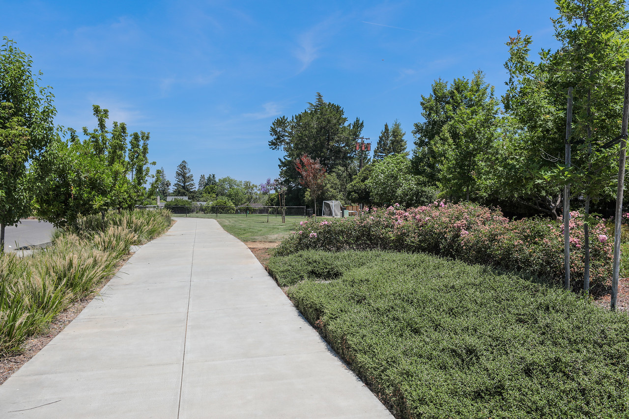 Rosita Park Los Altos Blu Skye Media-8755-X2.jpg