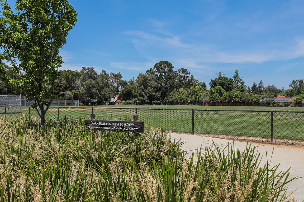 Rosita Park Los Altos Blu Skye Media-8756-X2.jpg