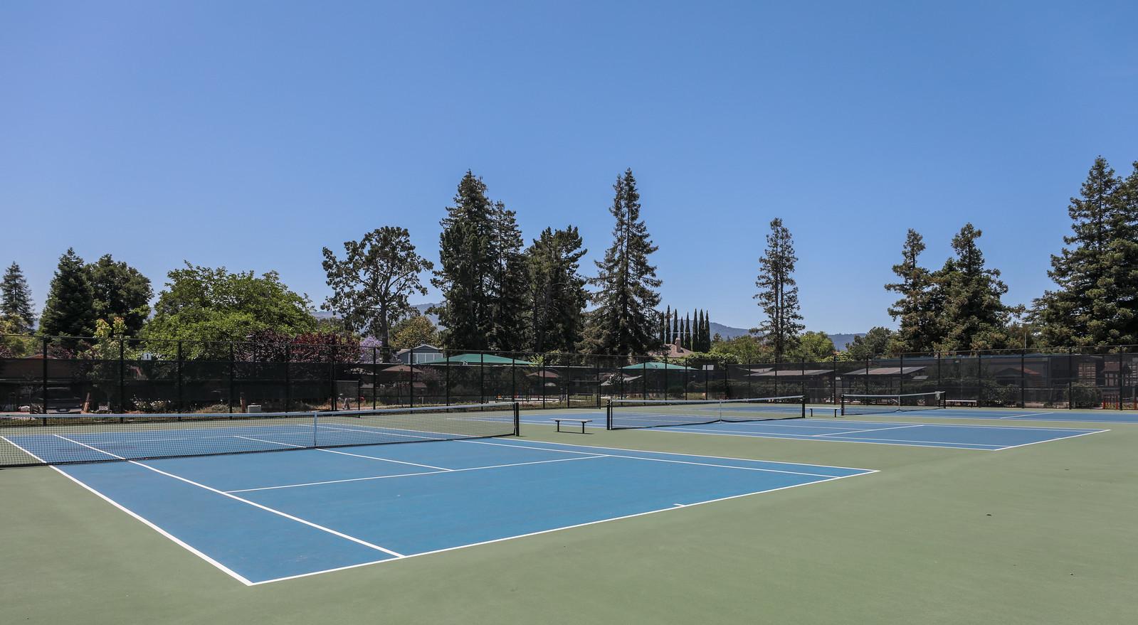 Rosita Park Los Altos Blu Skye Media-8762-X3.jpg