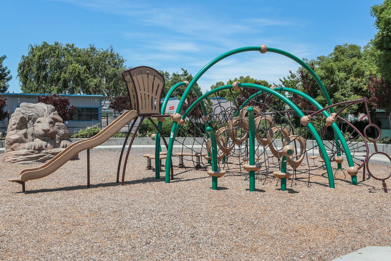 Rosita Park Los Altos Blu Skye Media-8764-X2.jpg