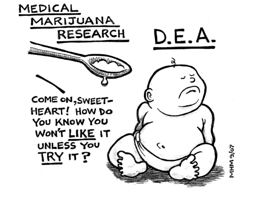 DEA ignores truth about cannabis