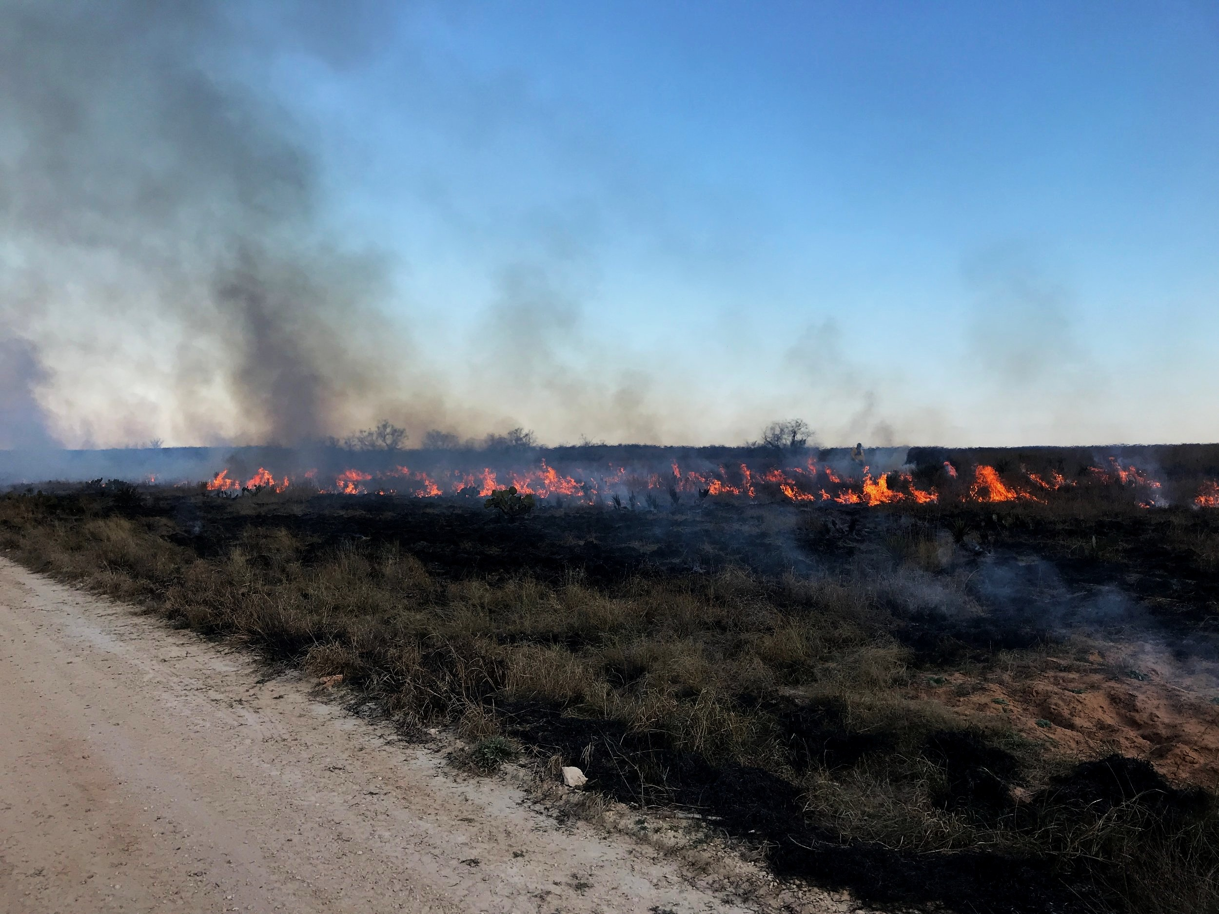 Conservation Fire Team -