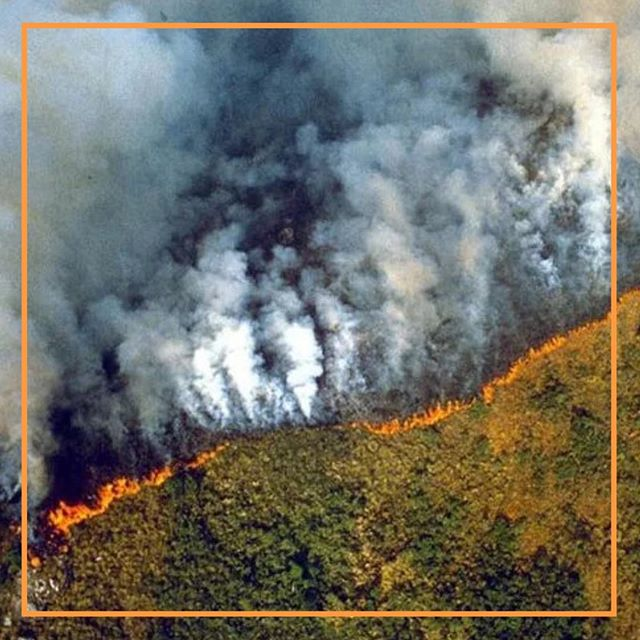 The Amazon rainforest in Brazil has been burning for more than two weeks. Swipe 👆🏼 to read the story.