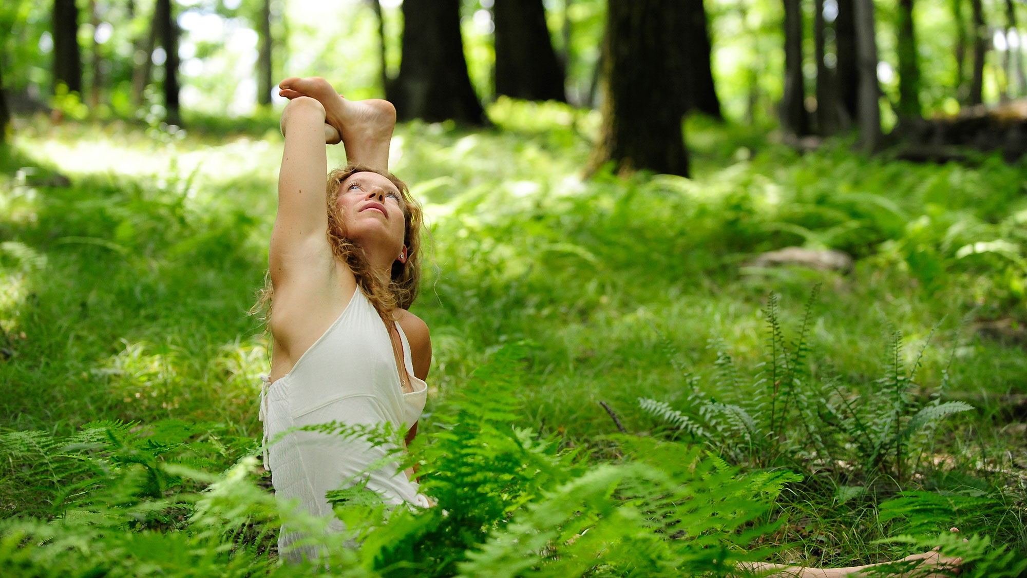banner-aligned-flow-yoga-bio-ferns.jpg