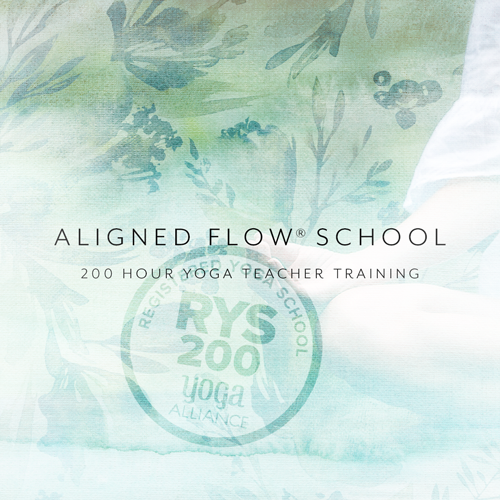 Yoga Teacher Training 200 And 300 Hour Programs By Aligned Flow In Denville New Jersey Aligned Flow