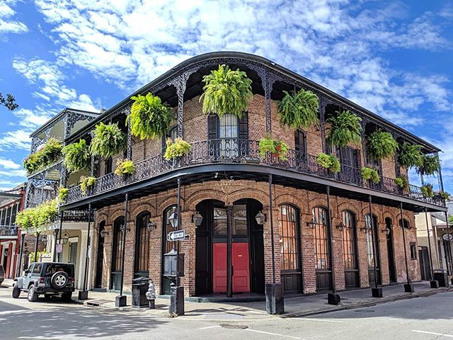 A fern-lover's paradise! Welcome to #nola. I'm itching to get started with @thevrma International Conference 2019 activities, but enjoying the site seeing in the meantime.  #neworleans #traveladdict #travel #vrma #vacationrental #louisiana