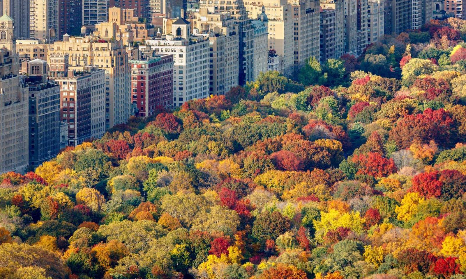 Fall-in-New-York_160909164547018-1600x960.jpg