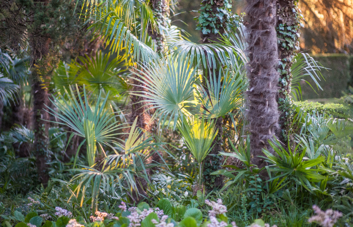giardino-7.jpg