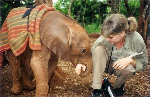 ElephantandAllison.jpg
