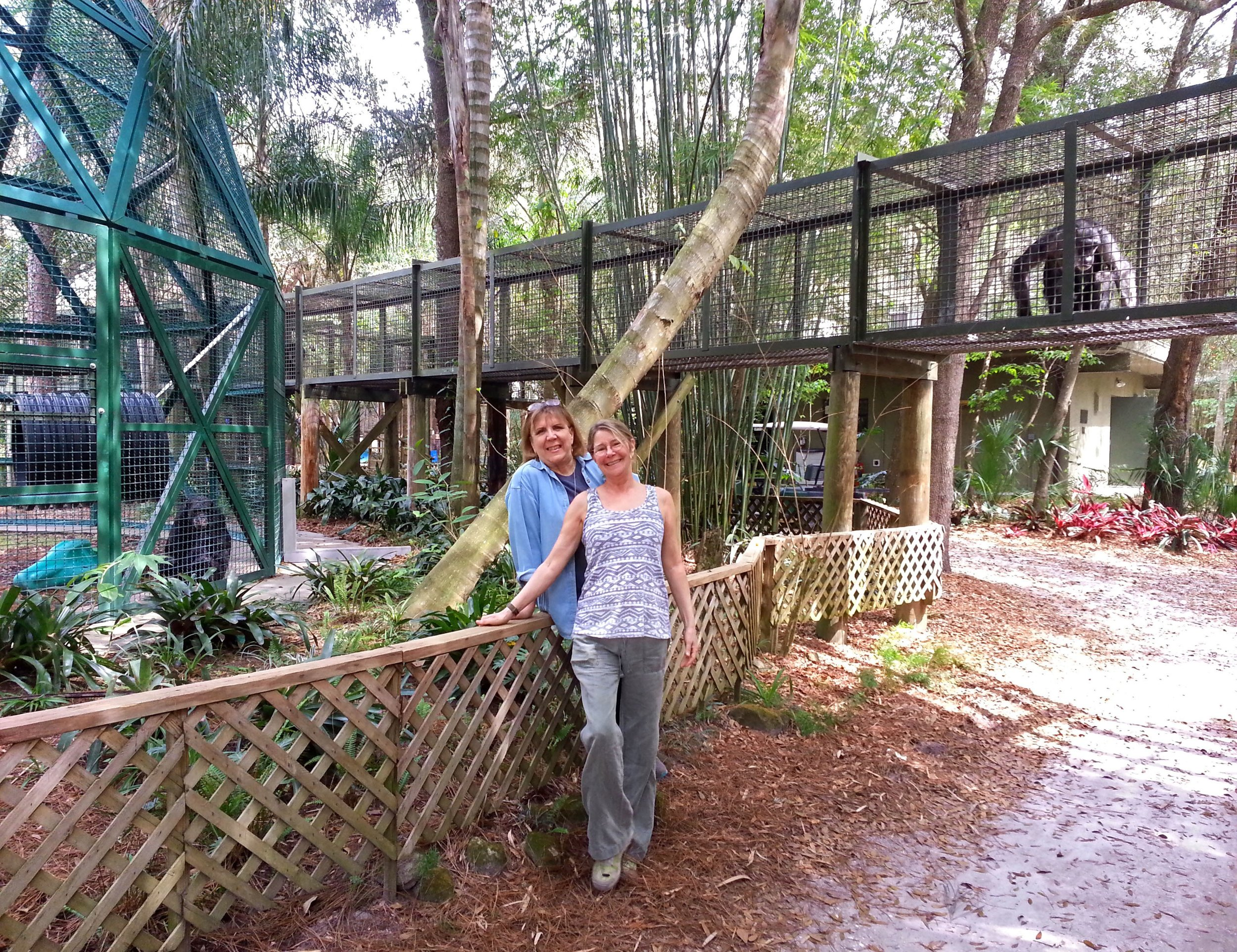 Patti Ragan and Allison Argo at Center for Great Apes.jpg