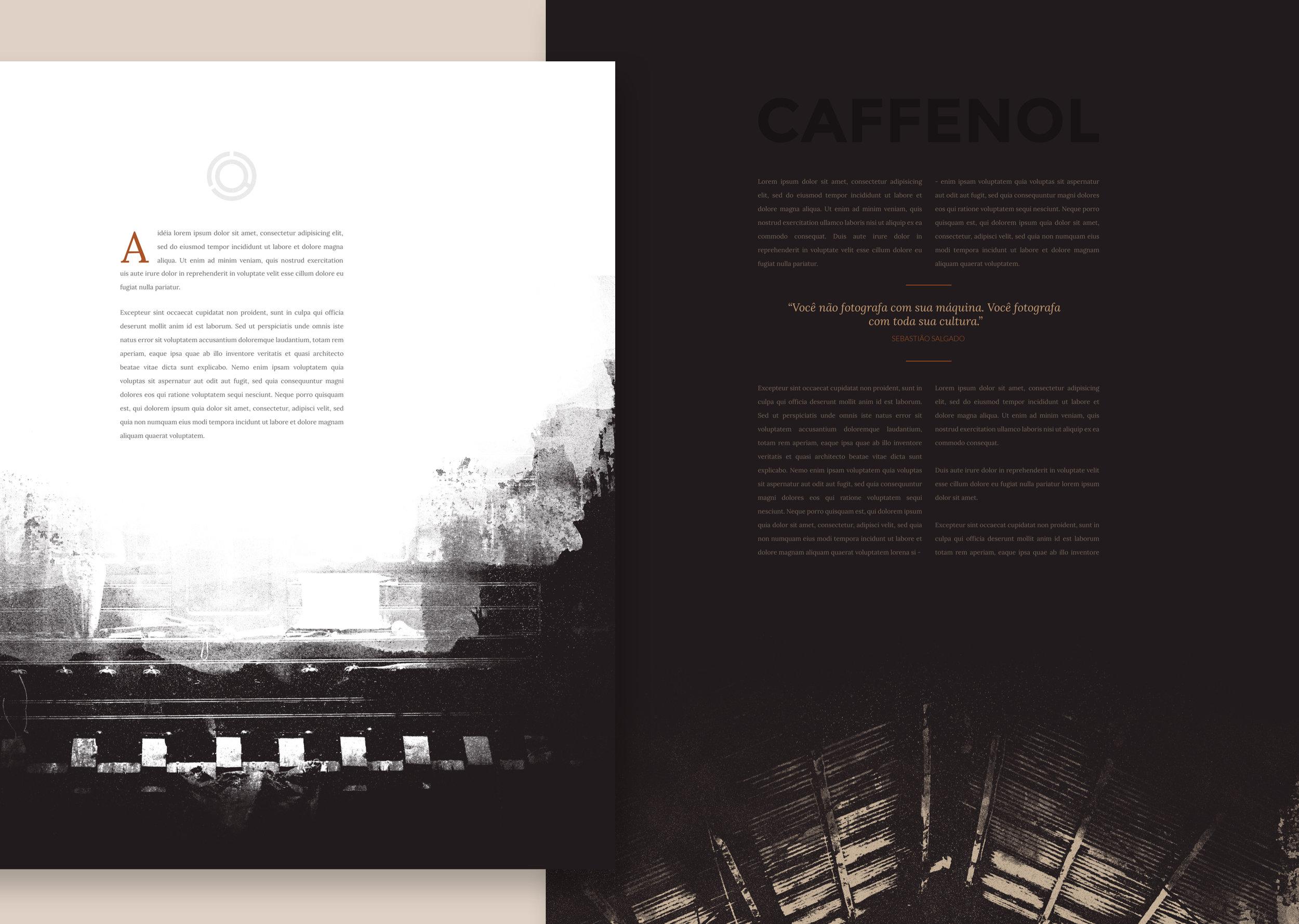 Caffenol website