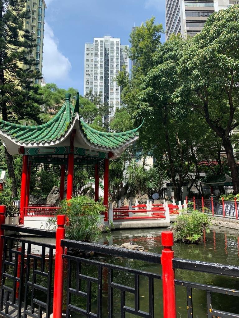 HK image.jpg
