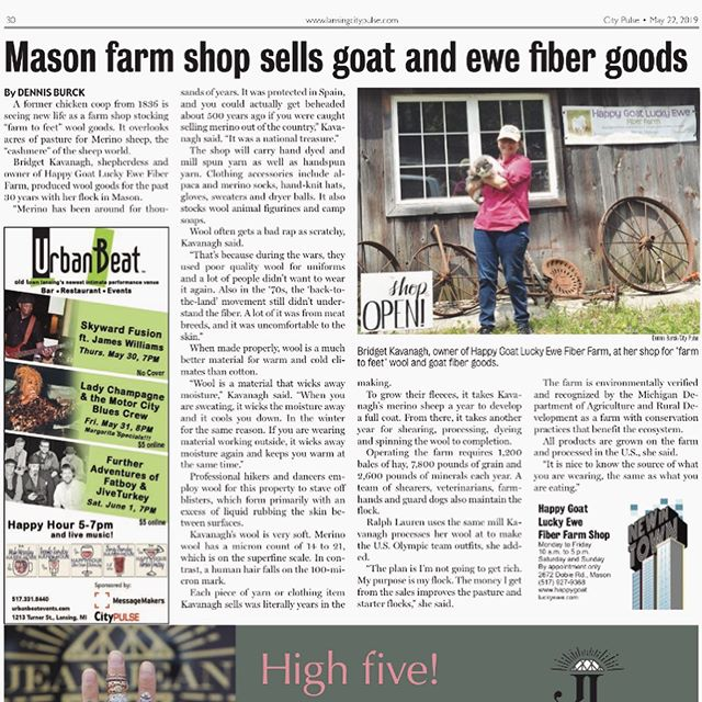 Check out our feature in @lansingcitypulse!  Link in bio, swipe for more kitties! . . . [image 1: magazine article about our farm from City Pulse; image 2: two grey and white cats sitting in a garden; image 3: a grey and white cat staring at the camera, laying in grass] #citypulse #lansingcitypulse #happygoatluckyewefiberfarm #sustainablewool #buylocal