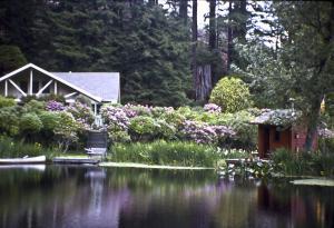 The Lodge .jpg