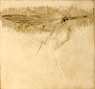 by Albert H. Cohen